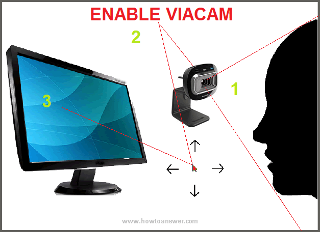 enable viacam