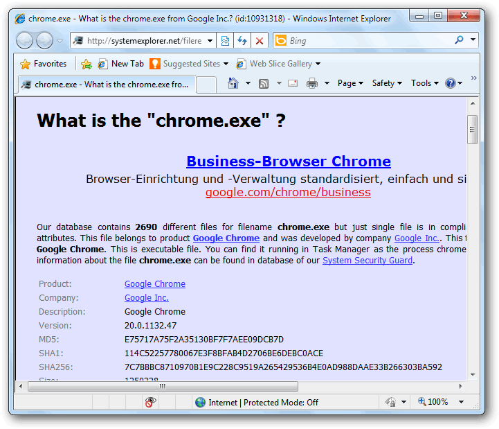 View process details about Chrome browser on systemexplorer website