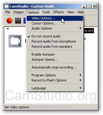 Video Options section in CamStudio